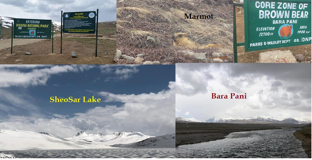 Deosai top to Sheosar Lake (In Deosai Plains) – Part 7